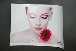 Self Adhesive Vinyl prinited by 3.2m (10 feet) eco solvent printer WER-ES3202 4